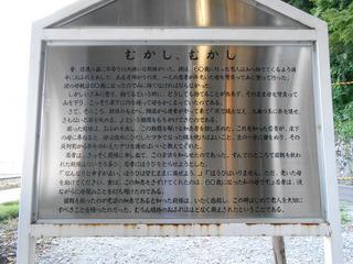 DSCN0329.JPG